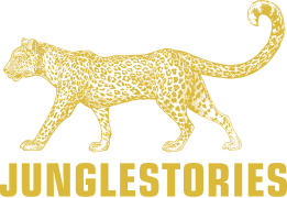 Junglestories